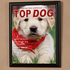 Top Dog Magazine Cover